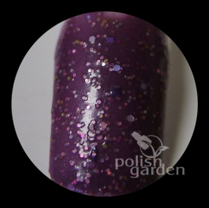 09 galaxy quest swatch